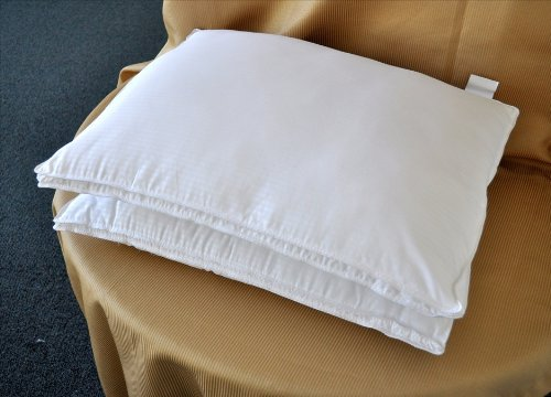 Natural Comfort White Microfiber Down Alternative Gel Like Pillow With Embossed Covering, Small, Set Of 2 front-881895