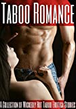 img - for Taboo Romance: A Collection of Wickedly Hot Taboo Erotica Stories book / textbook / text book