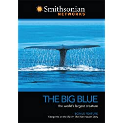 Smithsonian Channel: Big Blue