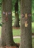 Garden Sensations Forest Faces Assortment