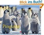 Pinguine 2013