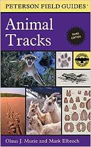 Animal Track Identification Guide