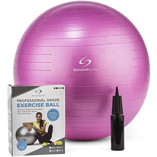 exercise-ball-yoga-swiss-ball-with-hand-pump-gym-quality-fitness-ball-for-women-and-men-lifetime-gua