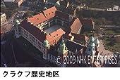 空撮 世界遺産 文化編 [DVD]