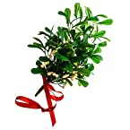Artificial Hanging Mistletoe