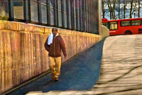 Morning Routine On Roosevelt Island Fine Art Photography