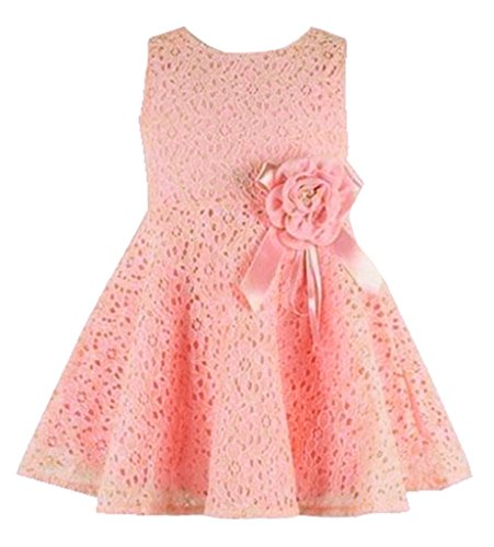 Rorychen Baby Girls' Sleeveless Lace Zipper Dress Pleated Skirt Classic Veil Dress 6 Months Light Pink