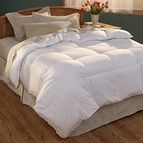 Spring Air Beds