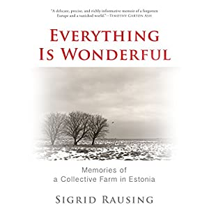 Everything Is Wonderful Audiobook