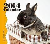 ウサギ (2014年版ミニカレンダー)