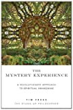 Mystery Experience (1780281153) by Freke, Timothy