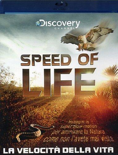 speed-of-life