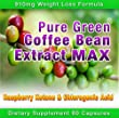 Pure Green Coffee Bean Extract Max Strongest Diet Pill 910mg Weight Loss Formula Green Coffee Bean Extract 800mg 100mg Raspberry Ketones Downloadable Food Journal Included Daily Dose Contains Up To 45 To 50 Chlorogenic Acid from Diet Health Solutions