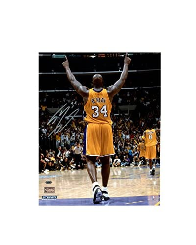 Steiner Sports Memorabilia Shaquille O'Neal Signed Arms Up In Gold Photo, 20 x 16