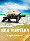 Sea Turtles - Beautiful, Real Photos and Fun Sea Turtle Facts for Kids (Discover the Worlds Most Amazing Animals Series)