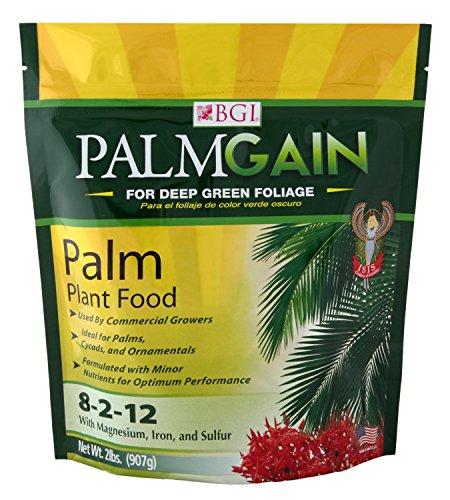 palmgain-2lb-bag-palm-tree-fertilizer-ferns-cycads-ixora