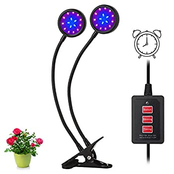 LED Grow Light, Amsuns Clip on Desk Plant Clamp Lamp with 360 Degree Adjustable Gooseneck Timer Control(3H/6H/12H) for Indoor Plants Hydroponic Garden Greenhouse (Dual Head 16W)