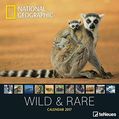 2017-wild-rare-calendar-teneues-grid-calendar-national-geographic-photography-calendar-30-x-30-cm