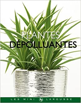 Flip to back flip to front for Plantes depolluantes