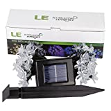 LE® Solar Flower Fairy String Lights 50 LEDs 16.5ft , Waterproof, Warm White, Portable, Blossom Christmas Lights with Light Sensor, Outdoor and Indoor Use, Ideal for Wedding, Party, Halloween Lights Decoration