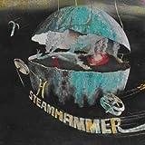 Speech by Steamhammer (2009-04-14)