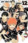ハイキュー!! 第12巻 2014年08月04日発売