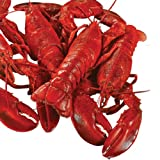 Lobster Gram Classic for 4 w  Boil in Tin Cansiter by Lobster Gram