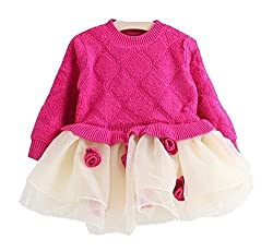 TheTickleToe Kids Girls Pink White Sweater Dress with Floral Applique Party Birthday Winter 2-3 Years
