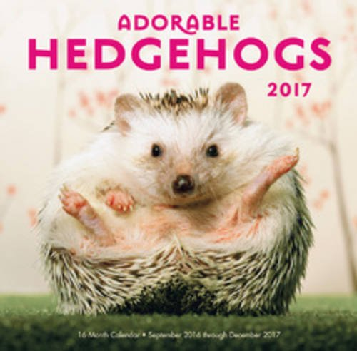 Adorable Hedgehogs Mini 2017: 16-Month Calendar September 2016 through December 2017