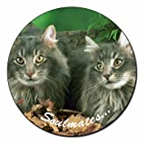 Norwegian Forest Cats 'Sentiment' Fridge Magnet Stocking Filler, Ref:SOUL-8FM