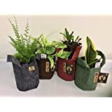 12 Designer Root Pouch One Gallon Grow Bags! 4 Colors! 3 Of Each! Super Cute!