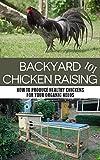 Backyard Chicken Raising 101: How to Produce Healthy Chickens for Your Organic Needs (backyard chicken, backyard chicken coop, backyard chicken for beginners, ... gardening, homesteading, raising chickens)