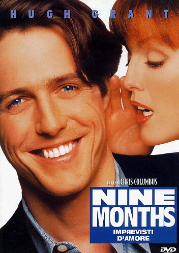 Nine months - Imprevisti d'amore [IT Import]