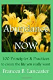 img - for Abundance Now: 100 Principles and Practices to create the life you really want book / textbook / text book