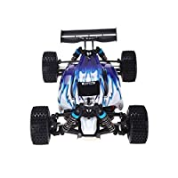 Wltoys New RC Car