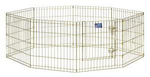MidWest Exercise Pen with Door, 24-Inch, Gold