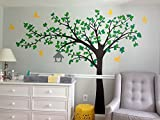 PopDecors - Big tree with love birds (100