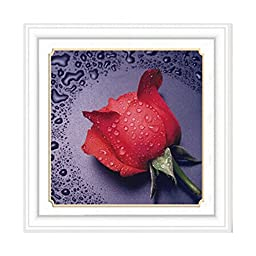 Diamond Stitch Water Rose Red Cross Stitch Cross Stitch 5D