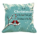 Christmas Gift,Christmas Couple Cushion,Christmas Gift,Cushion,Gift,Gifts for christmas,Chistmas decorations,Christmas celebrations,Christmas occasion,Gift for couple(GIFTS5062)