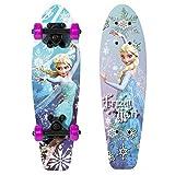 Frozen Heart 21 in. Wood Skateboard