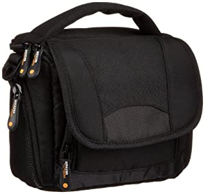 Amazonbasics Bag For Camcorders And Large P&s Cameras Includes Strap