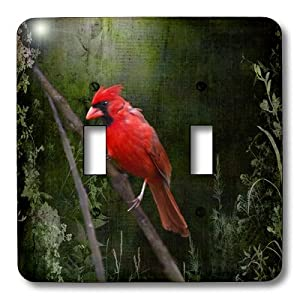 3drose Lsp 48670 2 Wild Brid Cardinal Bird In Spring Art