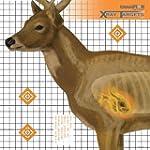 Champion Traps & Targets Deer 25x25-I...