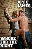 img - for Whore For The Night (Straight Reluctant Erotica) book / textbook / text book