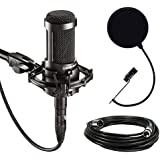 Audio-Technica AT2035 Large Diaphragm Studio Condenser Microphone Bundle with...