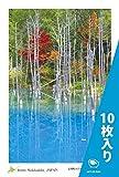 PC-219-10 [ ���������� ] �̳�ƻ ���� ̾�� �Ϥ��� �ݥ��ȥ����� ����Į �Ĥ��� �� Postcards from Hokkaido, JAPAN �� Blue Pond in Biei �� ��