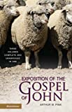 Exposition of the Gospel of John:  Three Volumes Complete and Unabridged in One (0310606349) by Arthur W. Pink