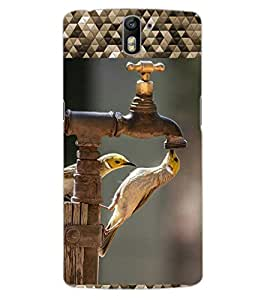 ColourCraft Beautiful Birds Design Back Case Cover for OnePlus One