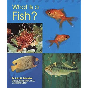 what is a fish animal kingdom lola m schaefer 9780736890946 what is a fish 300x300