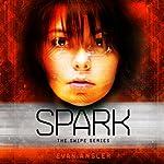 Spark: Swipe, Book 4 | Evan Angler